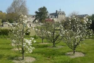 Saint-Jacut